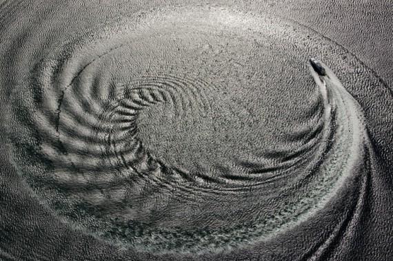 Pattern - Andrea Francolini