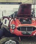 Austin Healey 56 100/6 - Laurent Nivalle