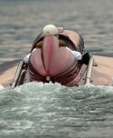 San Marco Racer - 66 - Henri Thibault