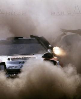 Safari 92 - François Baudin