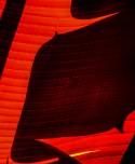 Ace of Spades - Richard Kelley